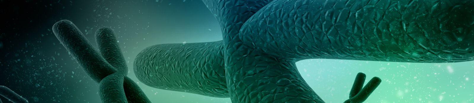 3d rendering chromosomes