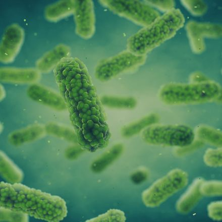 Bacteria Germ infection and bacterial disease epidemic